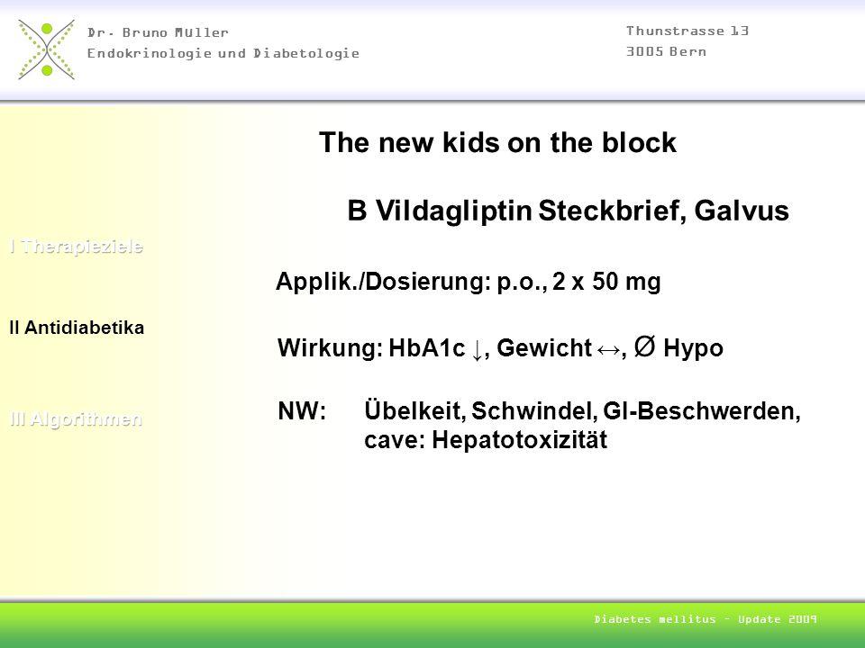 Dr. Bruno Müller Endokrinologie und Diabetologie Thunstrasse 13 3005 Bern Diabetes mellitus – Update 2009 II Antidiabetika B Vildagliptin Steckbrief,