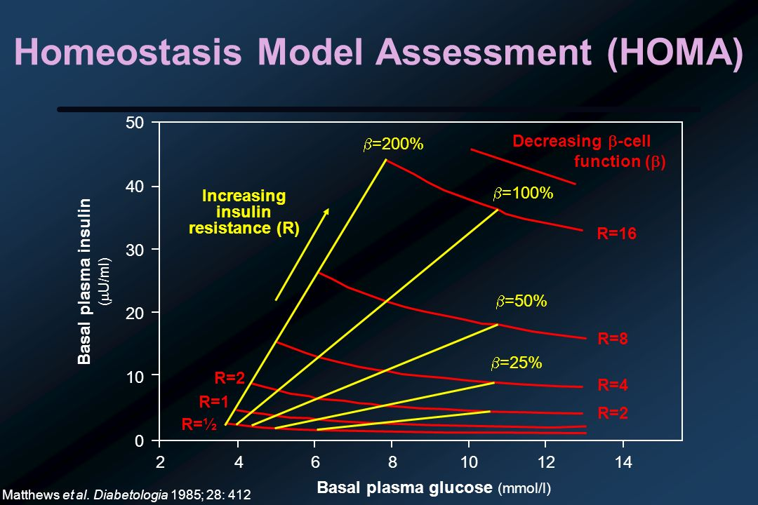 Homeostasis Model Assessment (HOMA) Basal plasma insulin ( U/ml) Matthews et al. Diabetologia 1985; 28: 412 2468101214 50 40 30 20 10 0 Basal plasma g