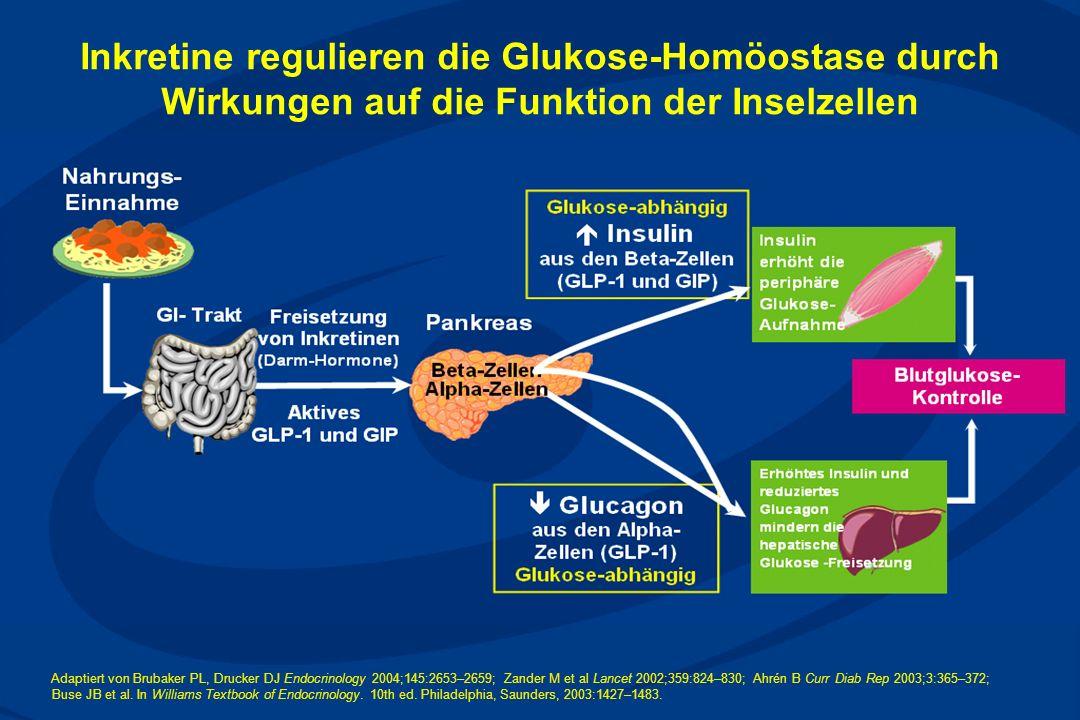 Adaptiert von Brubaker PL, Drucker DJ Endocrinology 2004;145:2653–2659; Zander M et al Lancet 2002;359:824–830; Ahrén B Curr Diab Rep 2003;3:365–372; Buse JB et al.