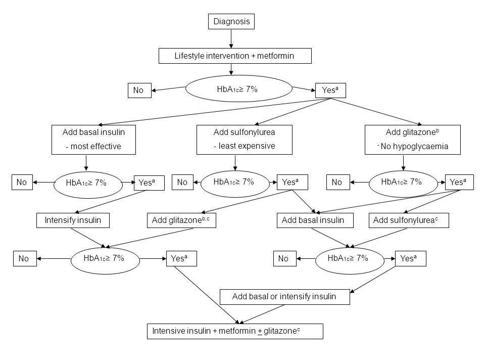 Lifestyle intervention + metformin YesªNo HbA 1c 7% Add sulfonylurea - least expensive Add glitazone b - No hypoglycaemia Add basal insulin - most eff