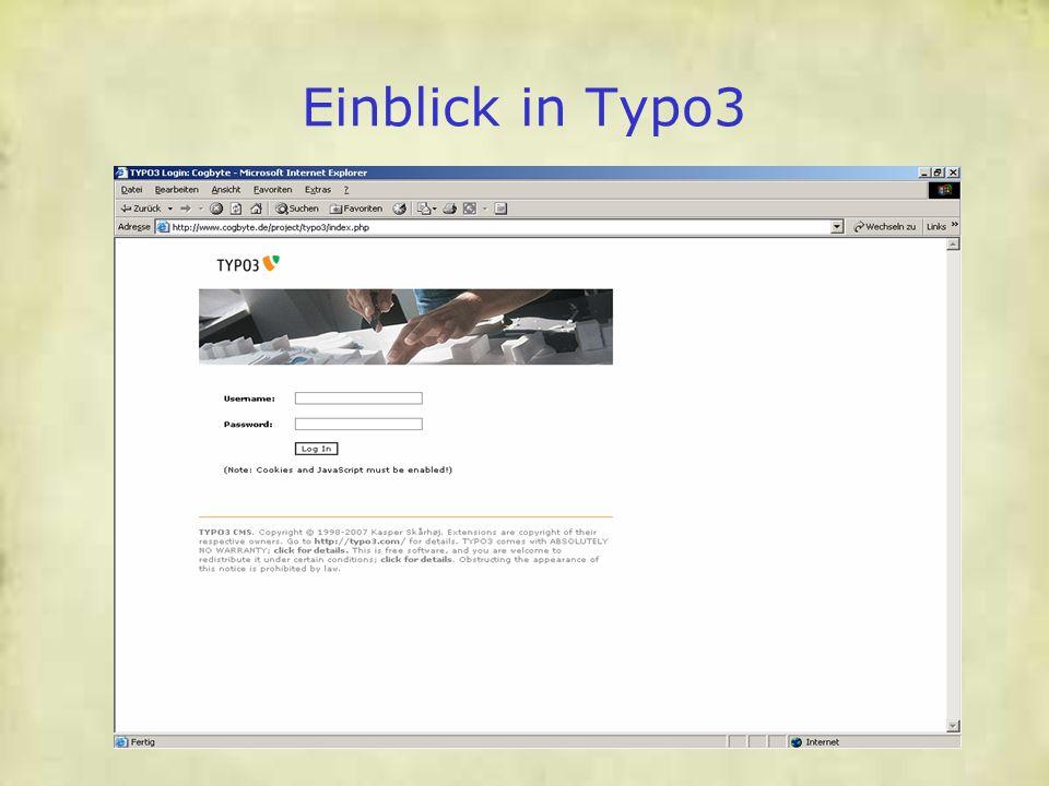 Einblick in Typo3