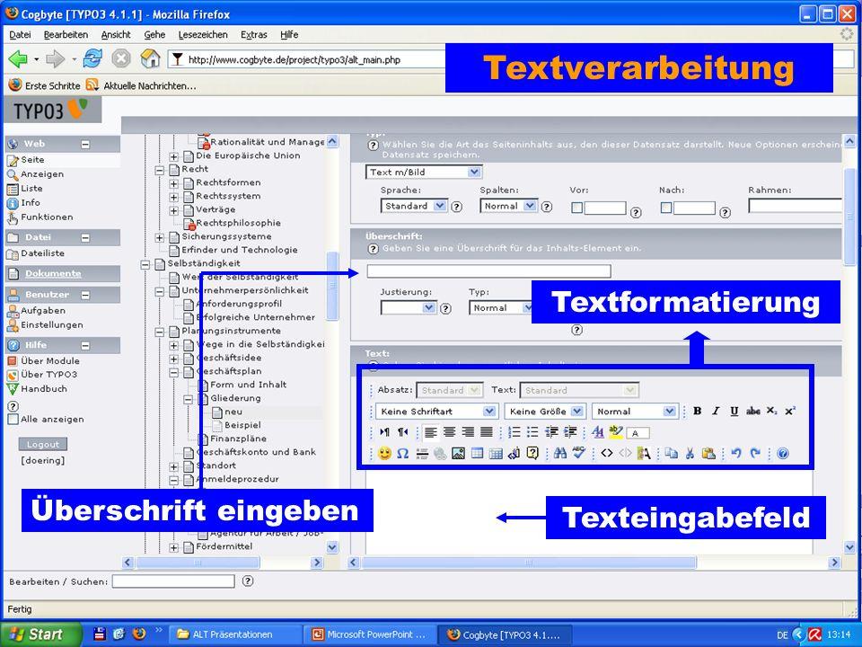 Textverarbeitung Textformatierung Überschrift eingeben Texteingabefeld
