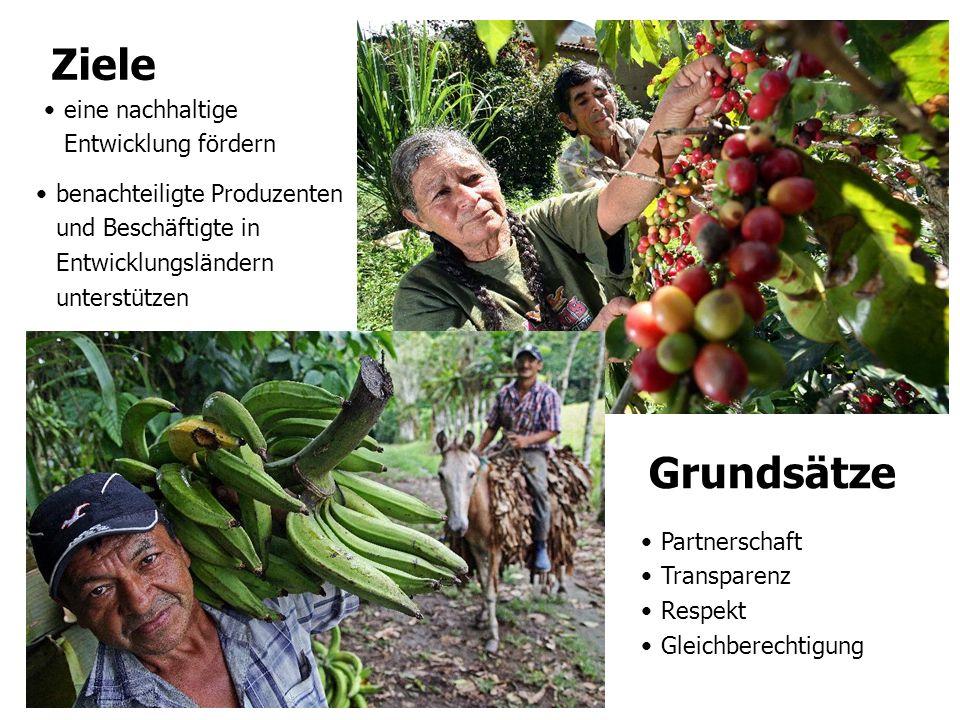 eine nachhaltige Entwicklung fördern Ziele benachteiligte Produzenten und Beschäftigte in Entwicklungsländern unterstützen Grundsätze Partnerschaft Tr
