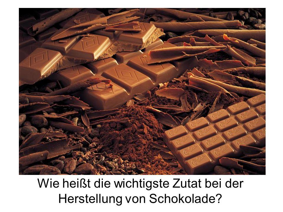 Wie heißt die wichtigste Zutat bei der Herstellung von Schokolade?