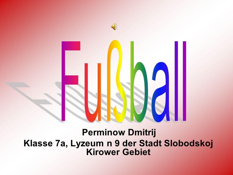 Perminow Dmitrij Klasse 7а, Lyzeum n 9 der Stadt Slobodskoj Kirower Gebiet