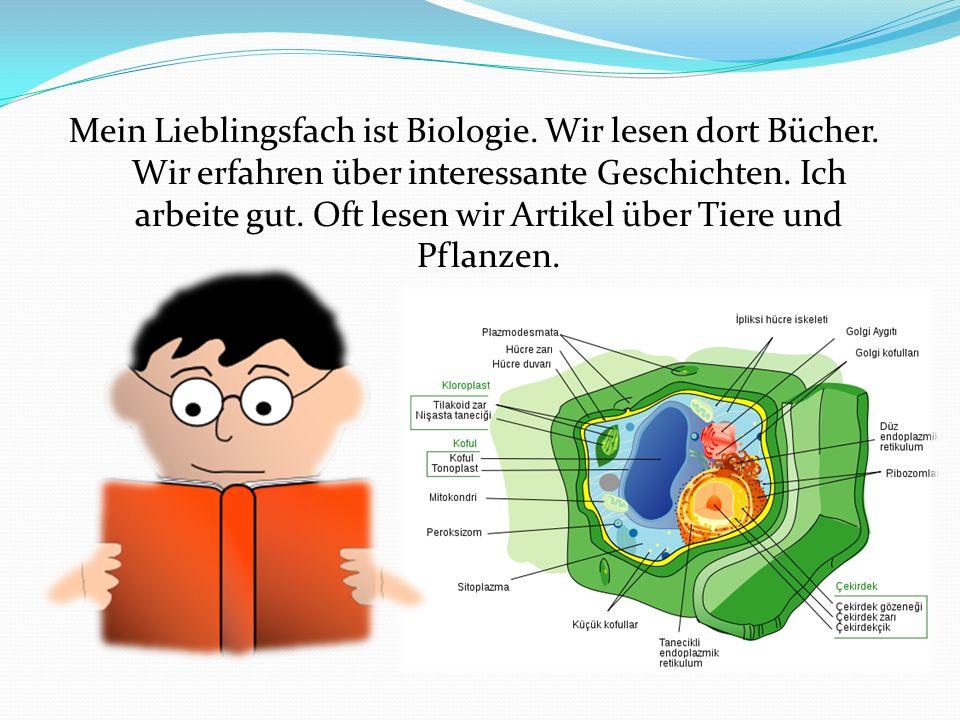 Es ist auch interessant, verschiedene Organe und Körperteile zu untersuchen.