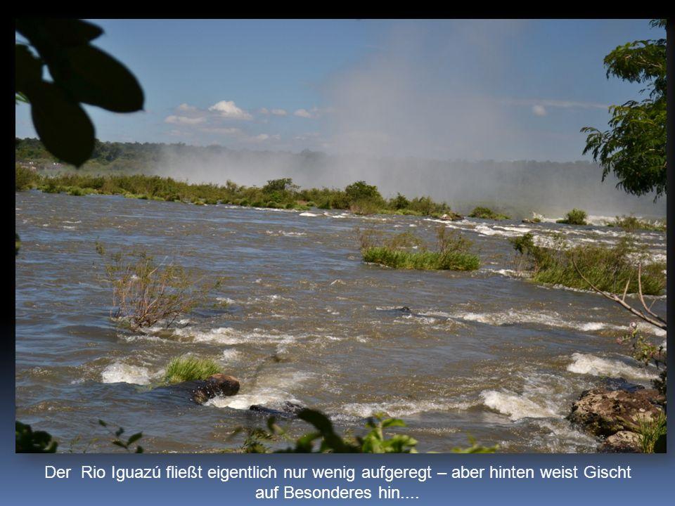 Der Rio Iguazú fließt eigentlich nur wenig aufgeregt – aber hinten weist Gischt auf Besonderes hin....