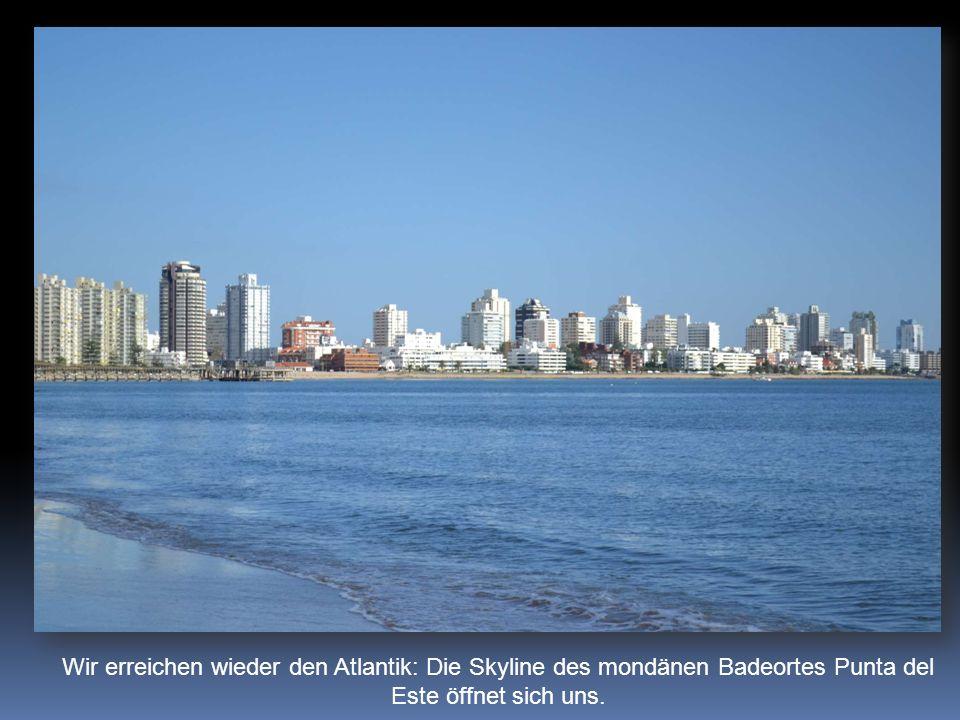 Wir erreichen wieder den Atlantik: Die Skyline des mondänen Badeortes Punta del Este öffnet sich uns.