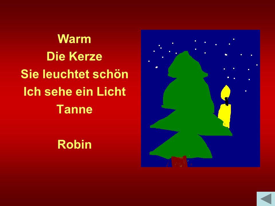Warm Die Kerze Sie leuchtet schön Ich sehe ein Licht Tanne Robin
