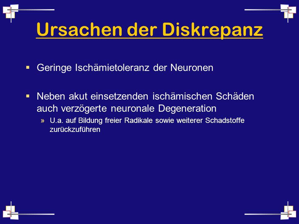 Ursachen der Diskrepanz Geringe Ischämietoleranz der Neuronen Neben akut einsetzenden ischämischen Schäden auch verzögerte neuronale Degeneration »U.a.