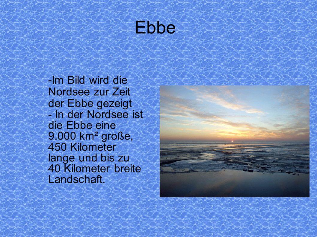 Ebbe -Im Bild wird die Nordsee zur Zeit der Ebbe gezeigt - In der Nordsee ist die Ebbe eine 9.000 km² große, 450 Kilometer lange und bis zu 40 Kilomet