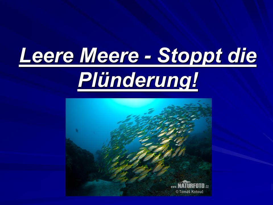 Gliederung 1.Begriffserklärung: Überfischung und Nachhaltigkeit 2.