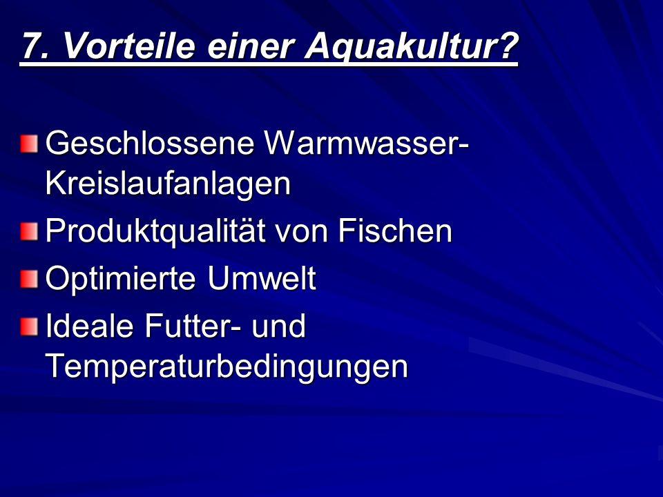 7.1 Nachteile einer Aquakultur Verbrauch von eiweißreicher Nahrung Werden oft Medikamente eingesetzt Fischkrankheiten Überlebenschancen von Wildfischen verringern sich
