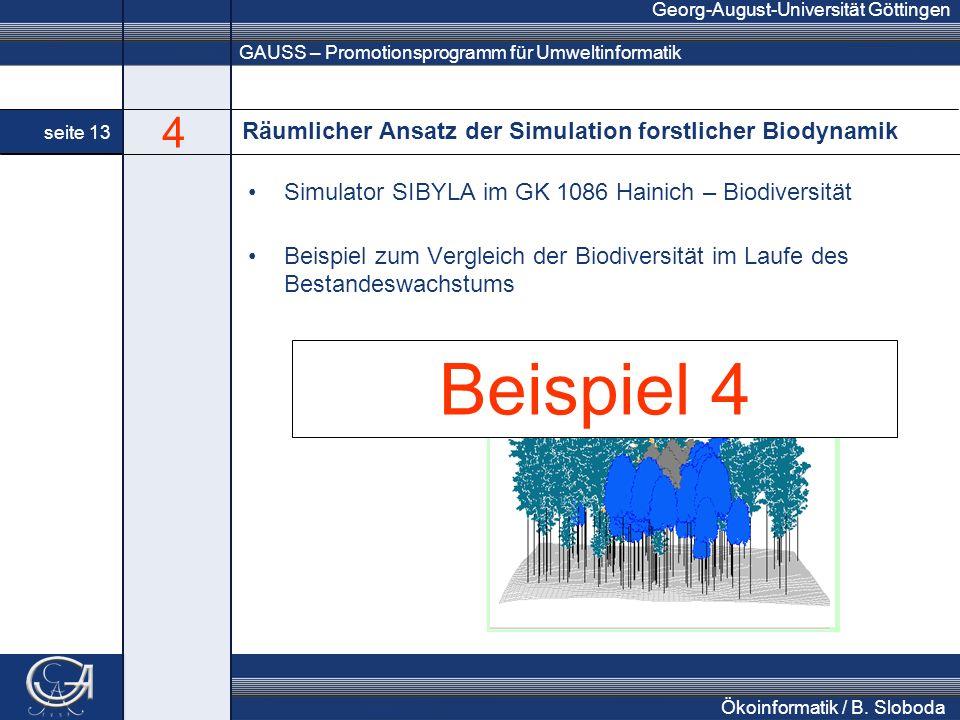 GAUSS – Promotionsprogramm für Umweltinformatik Georg-August-Universität Göttingen seite 13 Ökoinformatik / B. Sloboda Räumlicher Ansatz der Simulatio