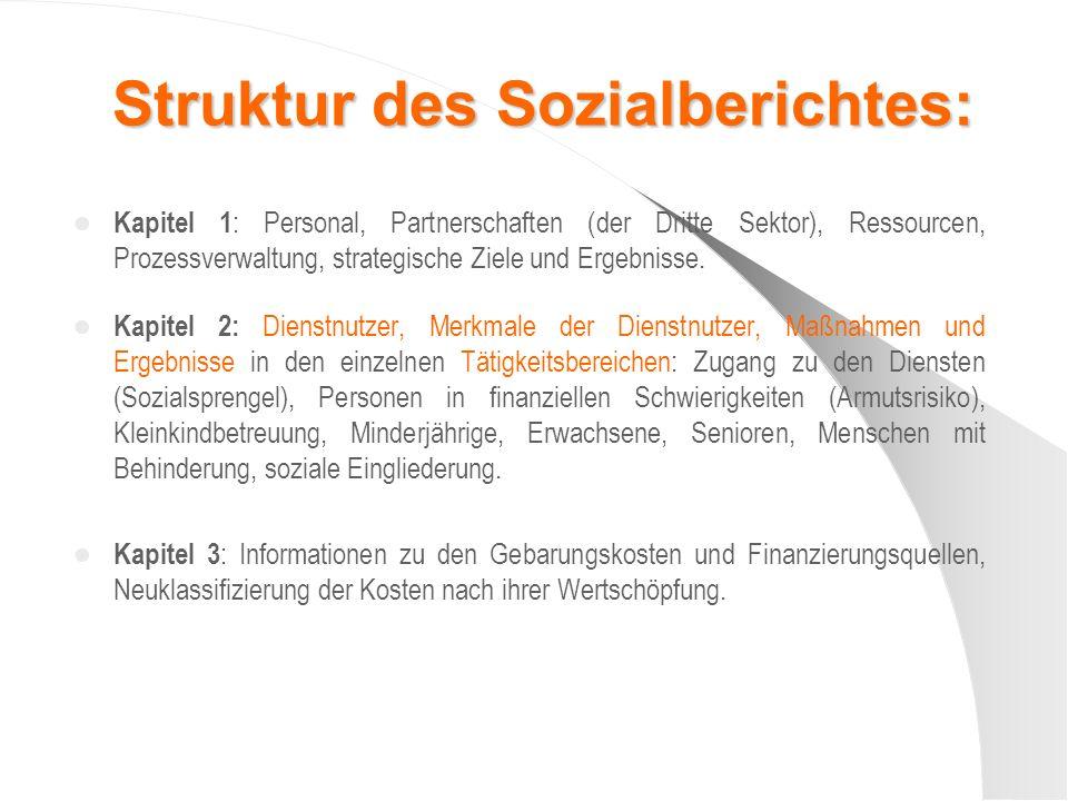 Struktur des Sozialberichtes: Kapitel 1 : Personal, Partnerschaften (der Dritte Sektor), Ressourcen, Prozessverwaltung, strategische Ziele und Ergebnisse.