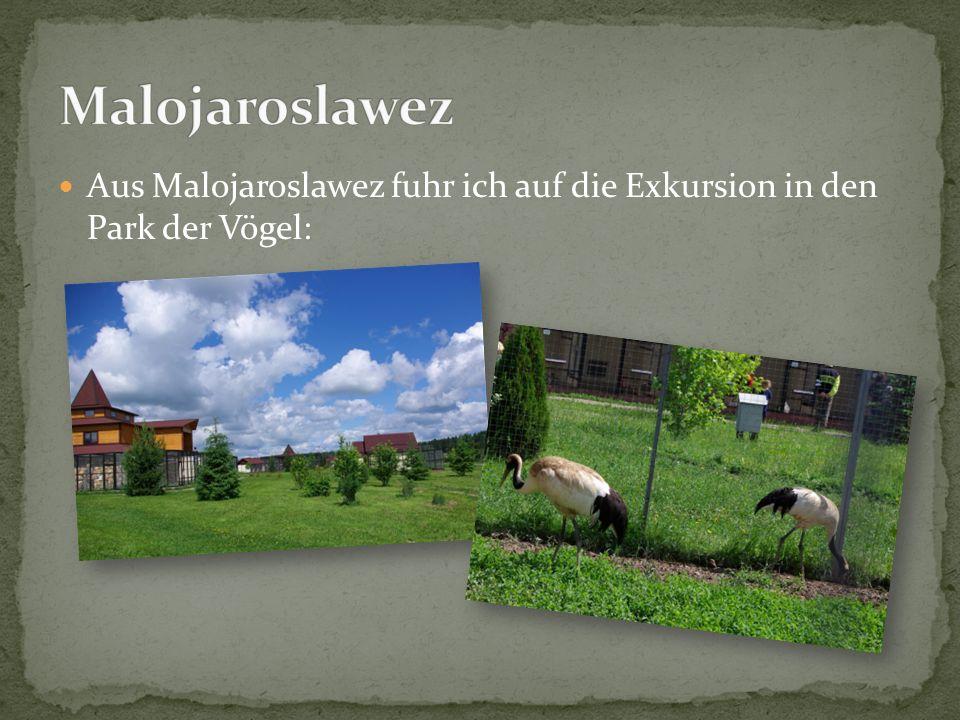 Aus Malojaroslawez fuhr ich auf die Exkursion in den Park der Vögel: