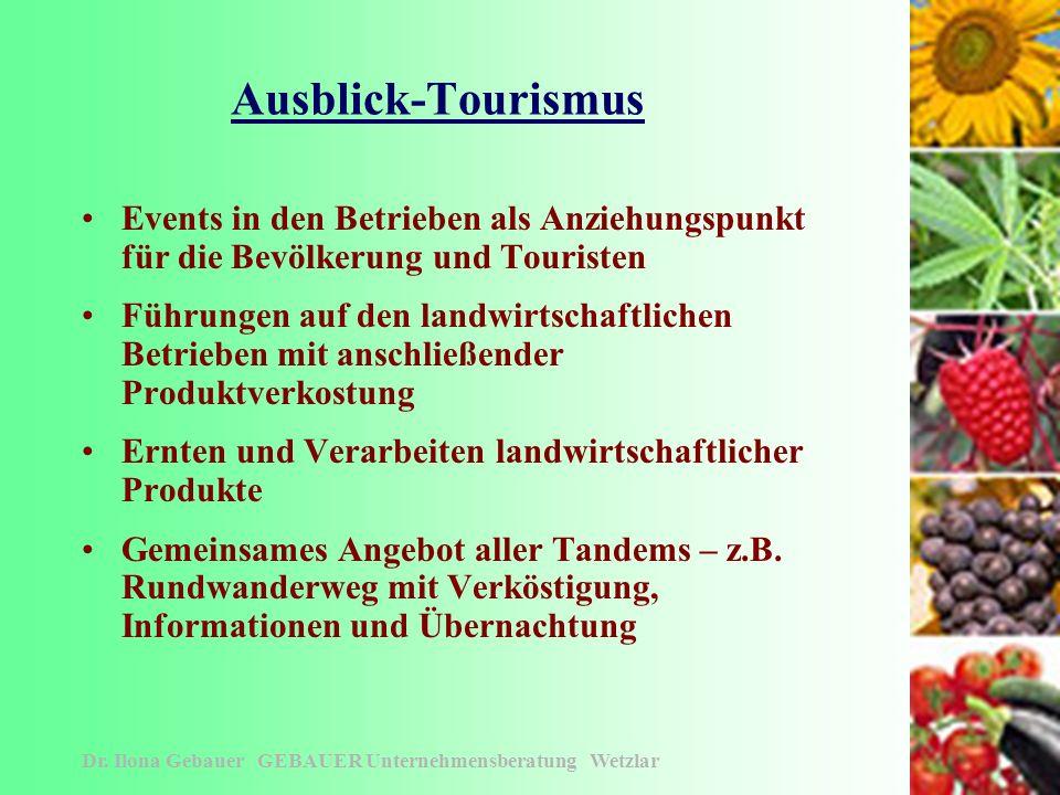Die Kleingruppen - Tandems Dr. Ilona Gebauer GEBAUER Unternehmensberatung Wetzlar Zusammenführung der Tandems Betreuung der Tandems: -Erarbeitung der