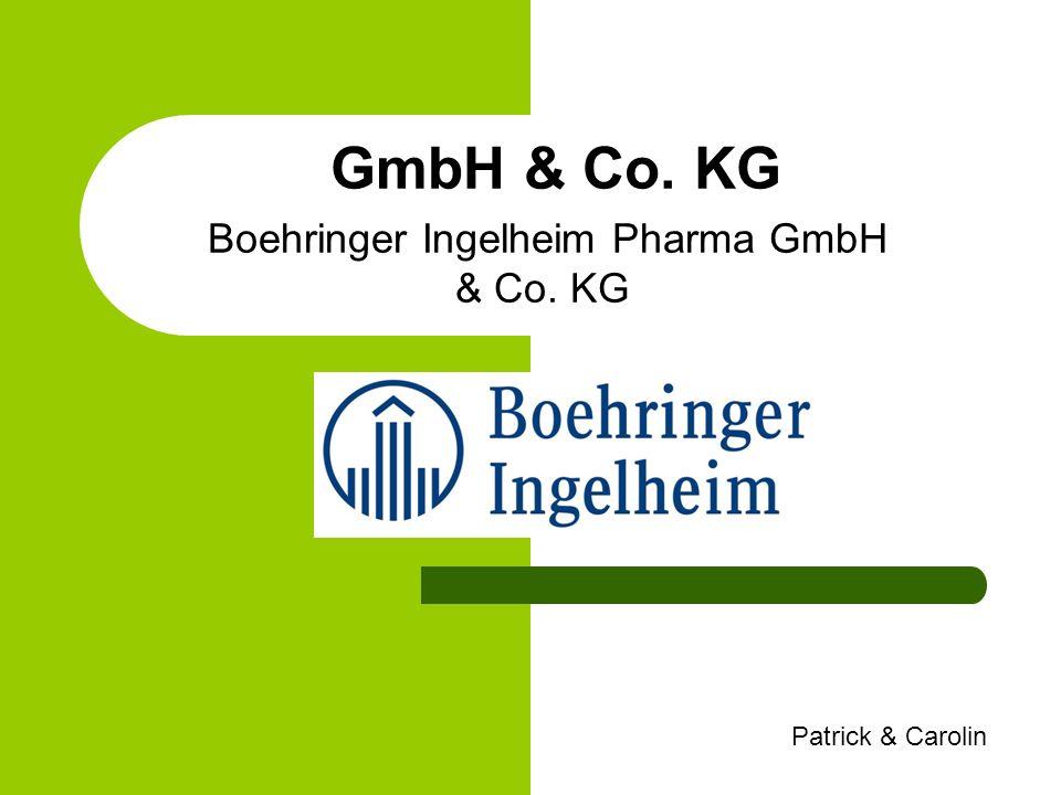 Gliederung Allgemeines 1.GmbH 2. Co. KG 3. GmbH & Co.