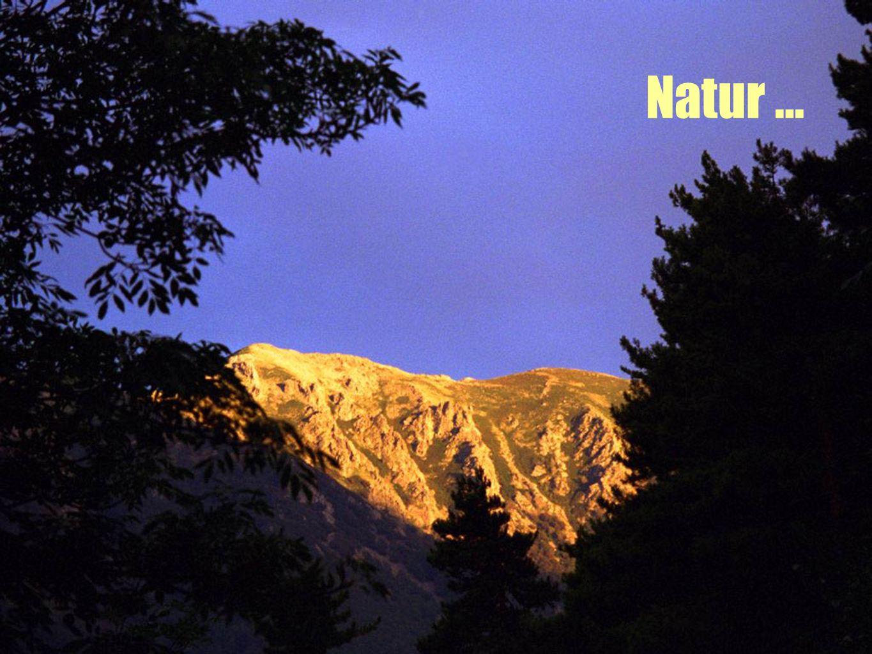 Natur …