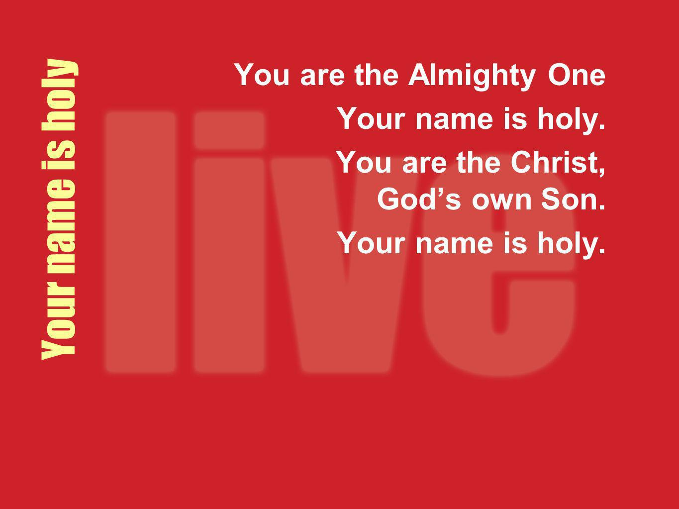 Your name is holy You are the Almighty One Your name is holy. You are the Christ, Gods own Son. Your name is holy.