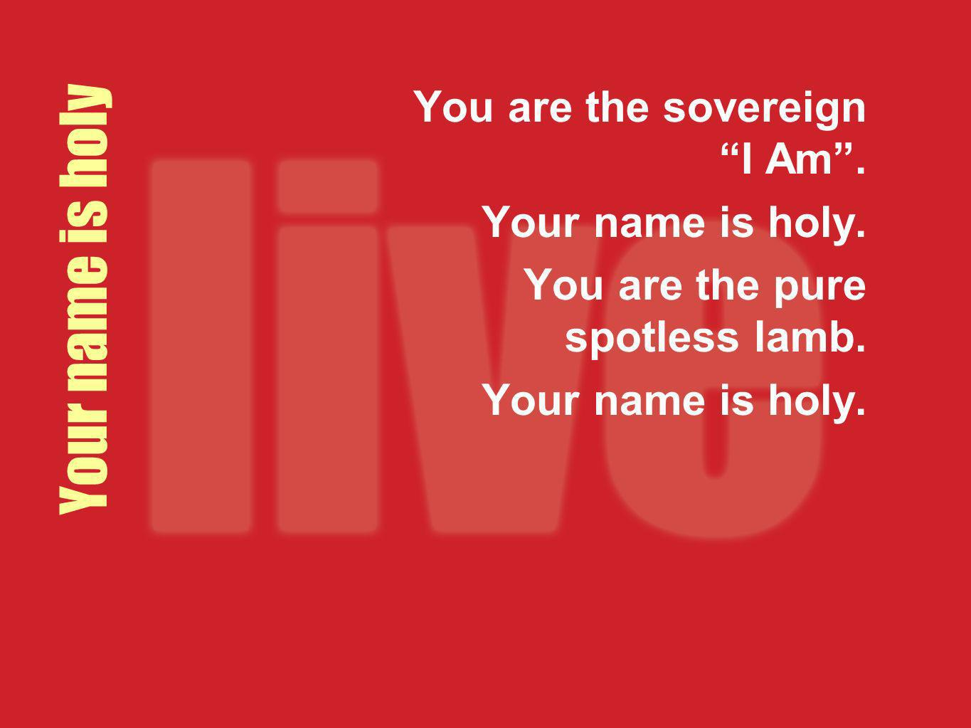 Your name is holy You are the sovereign I Am. Your name is holy. You are the pure spotless lamb. Your name is holy.