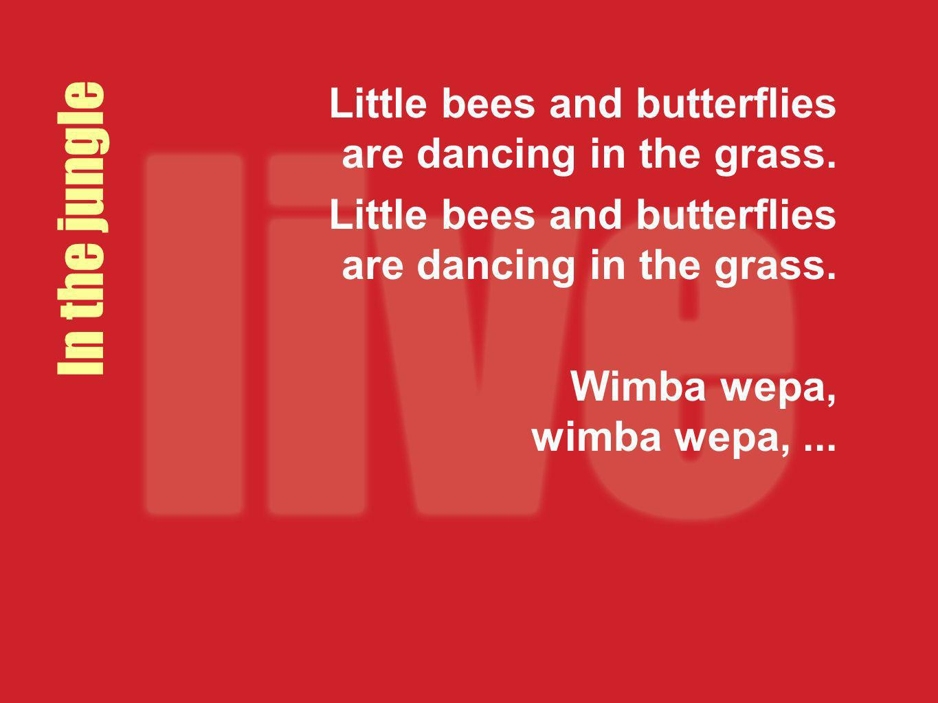 Little bees and butterflies are dancing in the grass. Wimba wepa, wimba wepa,... In the jungle