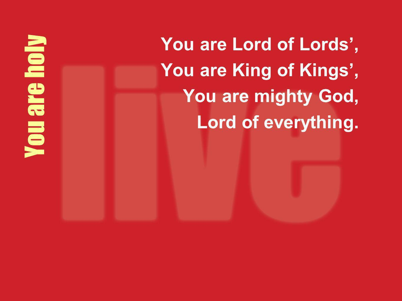 You are holy You are Lord of Lords, You are King of Kings, You are mighty God, Lord of everything.