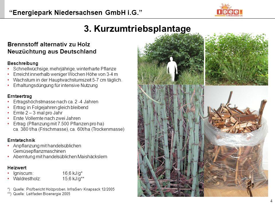 Energiepark Niedersachsen GmbH i.G. 4. Holzvergaser