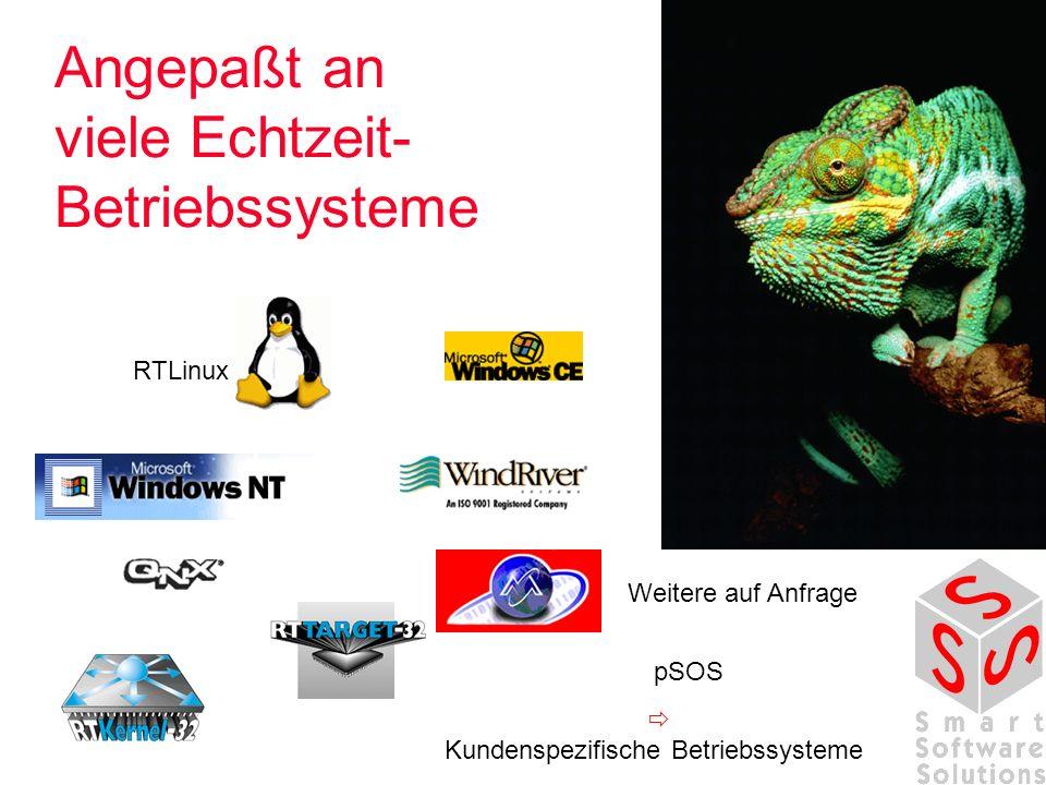 Angepaßt an viele Echtzeit- Betriebssysteme pSOS Weitere auf Anfrage Kundenspezifische Betriebssysteme RTLinux