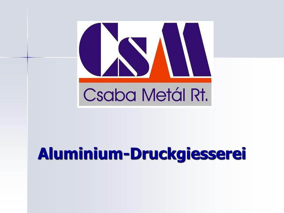 Aluminium-Druckgiesserei