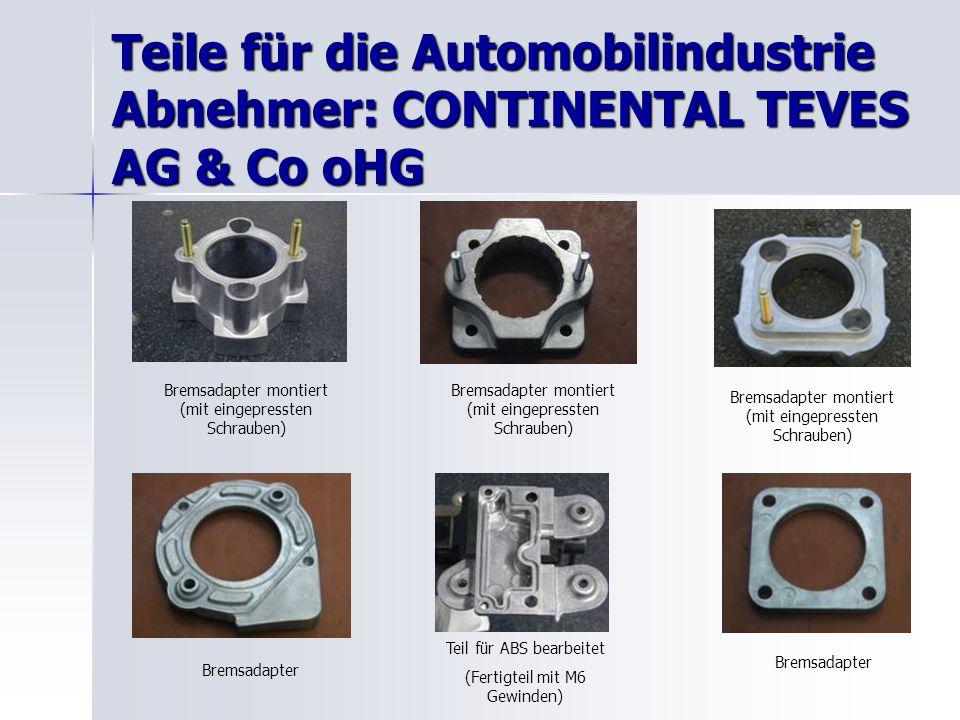 Teile für die Automobilindustrie Abnehmer: CONTINENTAL TEVES AG & Co oHG Bremsadapter montiert (mit eingepressten Schrauben) Bremsadapter Teil für ABS bearbeitet (Fertigteil mit M6 Gewinden) Bremsadapter Bremsadapter montiert (mit eingepressten Schrauben)