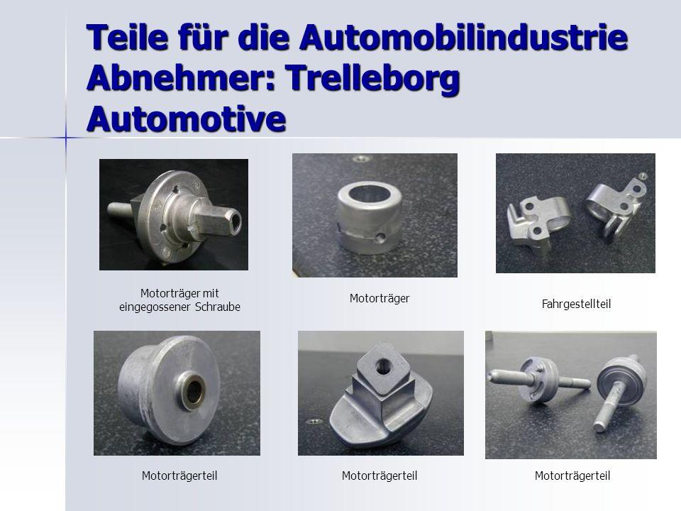 Teile für die Automobilindustrie Abnehmer: Trelleborg Automotive Motorträger mit eingegossener Schraube Motorträger Fahrgestellteil Motorträgerteil