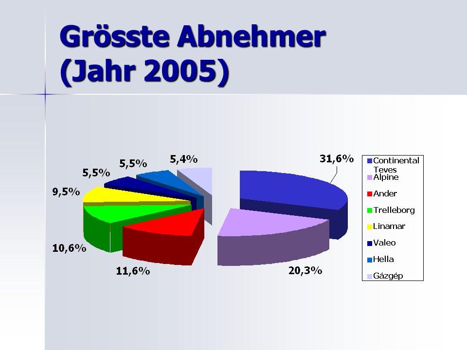 Grösste Abnehmer (Jahr 2005)
