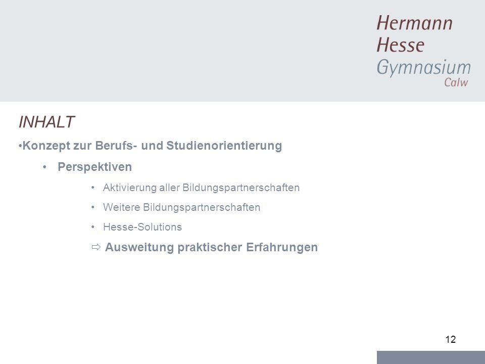 12 INHALT Konzept zur Berufs- und Studienorientierung Perspektiven Aktivierung aller Bildungspartnerschaften Weitere Bildungspartnerschaften Hesse-Solutions Ausweitung praktischer Erfahrungen