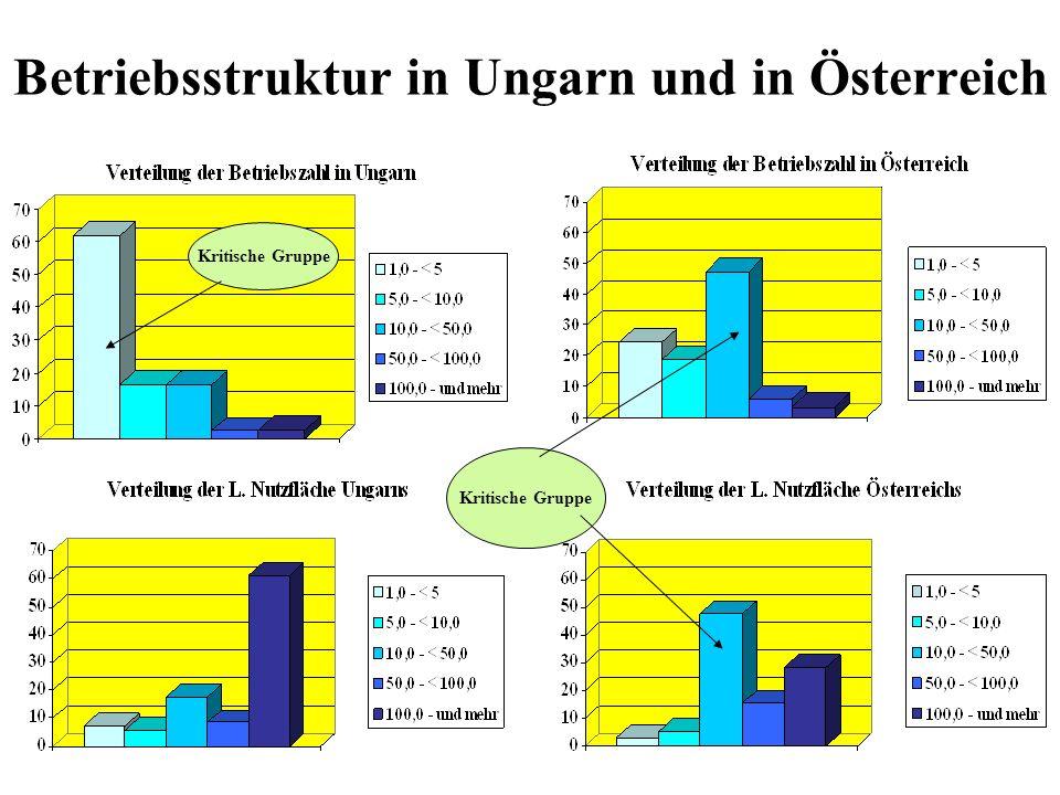 Betriebsstruktur in Ungarn und in Österreich Kritische Gruppe