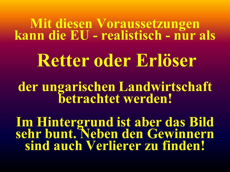 Mit diesen Voraussetzungen kann die EU - realistisch - nur als Retter oder Erlöser der ungarischen Landwirtschaft betrachtet werden! Im Hintergrund is
