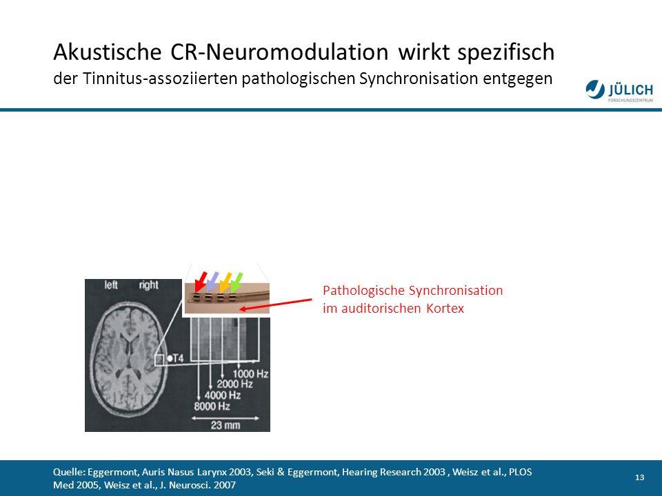13 Pathologische Synchronisation im auditorischen Kortex Quelle: Eggermont, Auris Nasus Larynx 2003, Seki & Eggermont, Hearing Research 2003, Weisz et