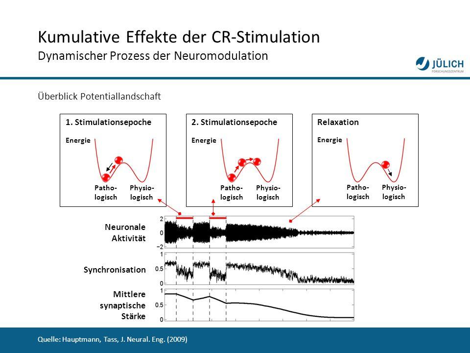 30 Kumulative Effekte der CR-Stimulation Dynamischer Prozess der Neuromodulation Überblick Potentiallandschaft 1. Stimulationsepoche Neuronale Aktivit