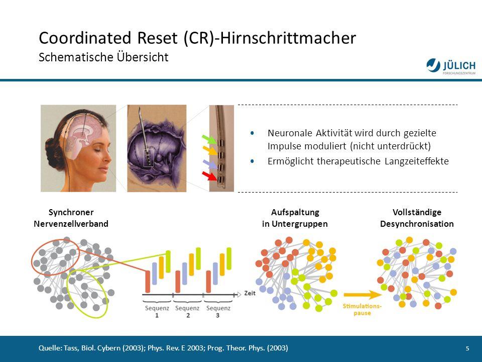 5 Quelle: Tass, Biol. Cybern (2003); Phys. Rev. E 2003; Prog. Theor. Phys. (2003) Synchroner Nervenzellverband Neuronale Aktivität wird durch gezielte