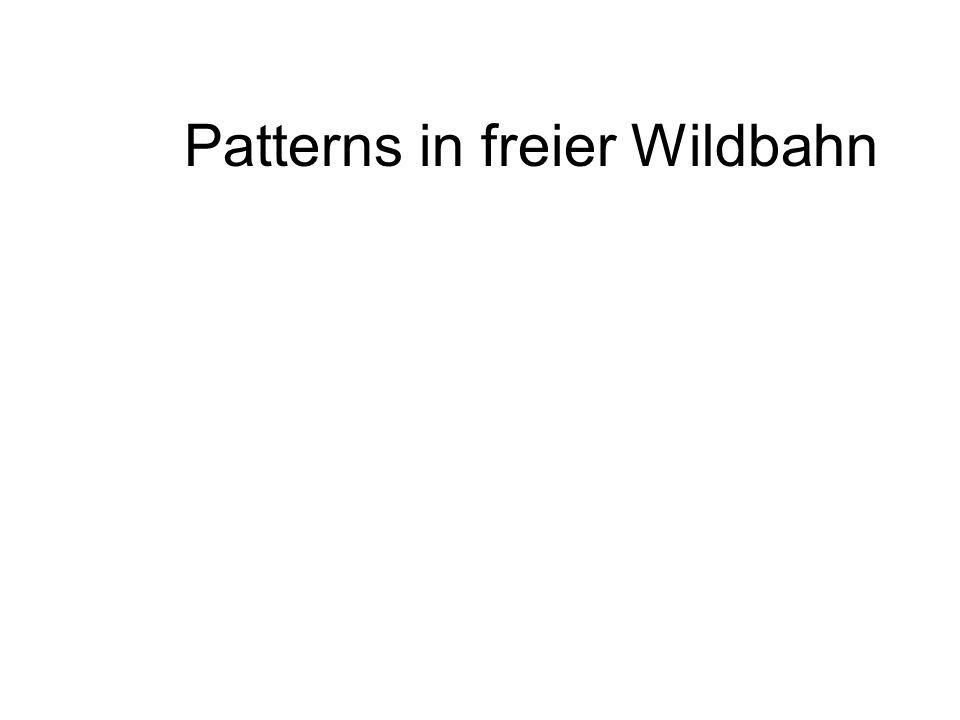 Patterns in freier Wildbahn
