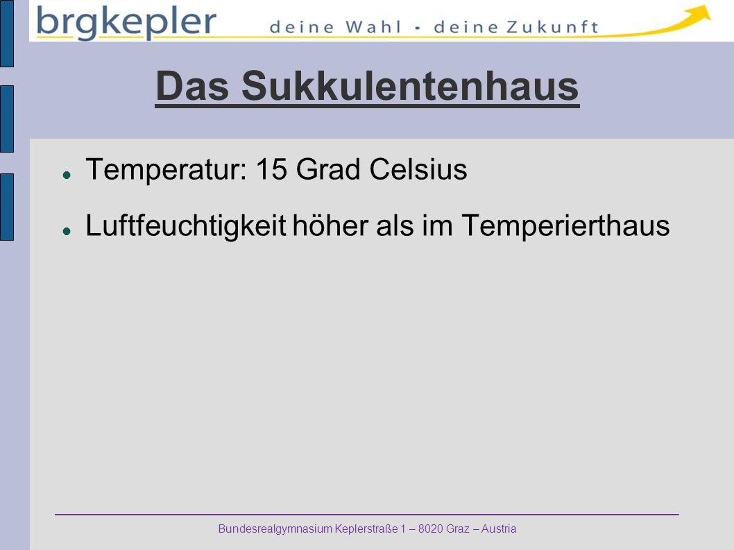 Bundesrealgymnasium Keplerstraße 1 – 8020 Graz – Austria Das Sukkulentenhaus Temperatur: 15 Grad Celsius Luftfeuchtigkeit höher als im Temperierthaus