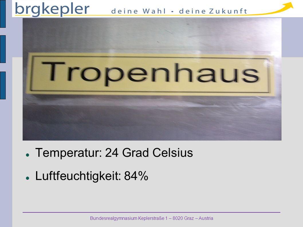 Bundesrealgymnasium Keplerstraße 1 – 8020 Graz – Austria Temperatur: 24 Grad Celsius Luftfeuchtigkeit: 84%
