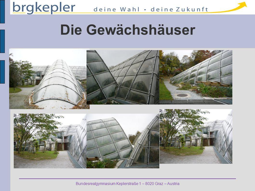 Bundesrealgymnasium Keplerstraße 1 – 8020 Graz – Austria Die Gewächshäuser