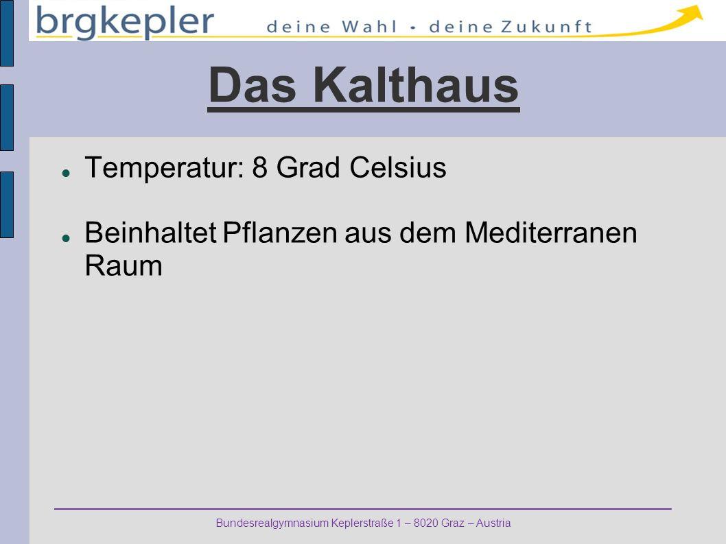 Bundesrealgymnasium Keplerstraße 1 – 8020 Graz – Austria Das Kalthaus Temperatur: 8 Grad Celsius Beinhaltet Pflanzen aus dem Mediterranen Raum
