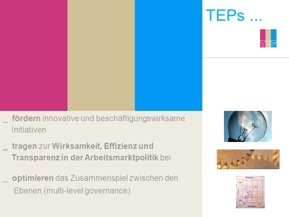 TEPs... _ fördern innovative und beschäftigungswirksame Initiativen _ optimieren das Zusammenspiel zwischen den Ebenen (multi-level governance) _ trag