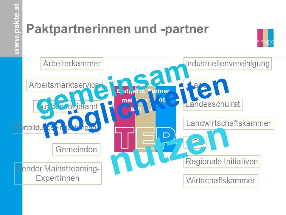 Paktpartnerinnen und -partner Land Bundessozialamt Arbeitsmarktservice Arbeiterkammer Wirtschaftskammer Landwirtschaftskammer Regionale Initiativen Ge