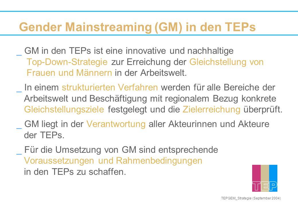 _ GM in den TEPs ist eine innovative und nachhaltige Top-Down-Strategie zur Erreichung der Gleichstellung von Frauen und Männern in der Arbeitswelt.