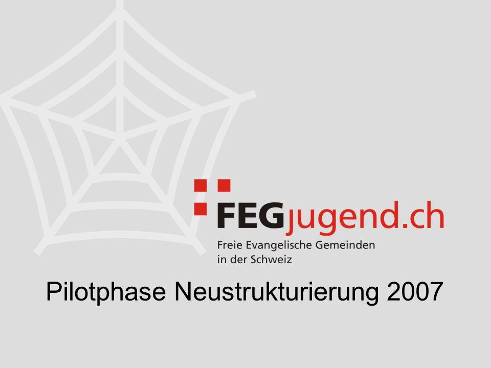 Pilotphase Neustrukturierung 2007