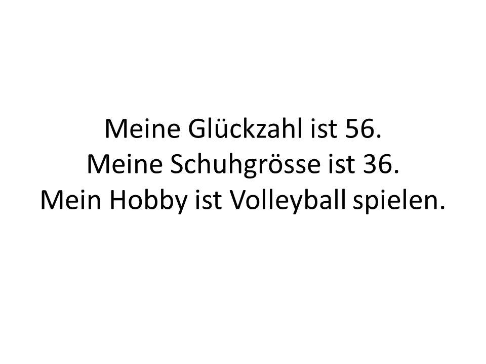 Meine Glückzahl ist 56. Meine Schuhgrösse ist 36. Mein Hobby ist Volleyball spielen.