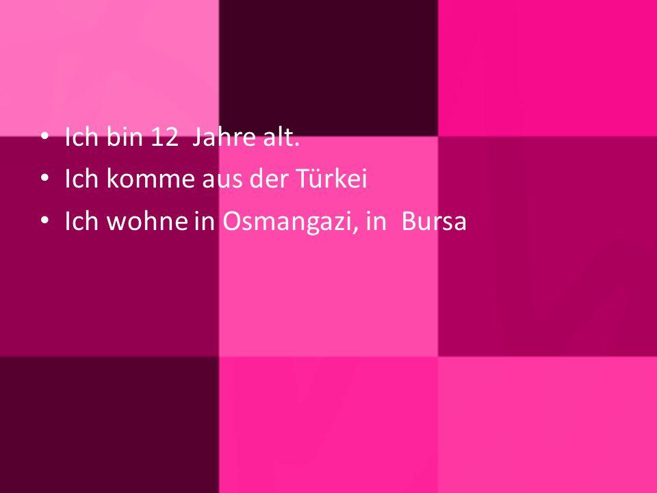 Ich bin 12 Jahre alt. Ich komme aus der Türkei Ich wohne in Osmangazi, in Bursa
